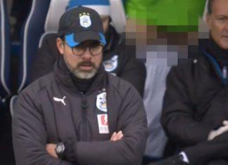 Huddersfield Town Penis